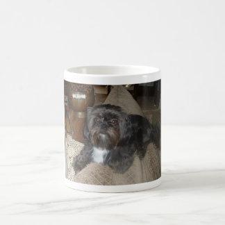 シーズー(犬)のTzuのコーヒー・マグ コーヒーマグカップ