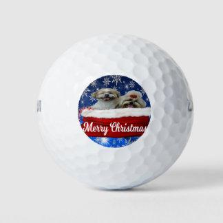 シーズー(犬)のtzuのゴルフ・ボール、クリスマス ゴルフボール