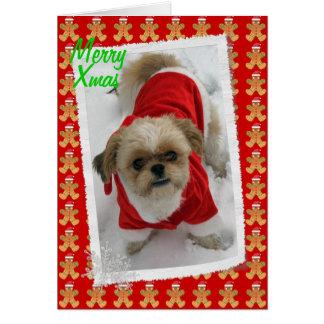 シーズー(犬)のtzuのラサのtzuのかわいいサンタ犬のクリスマスカード カード