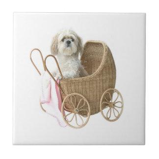 シーズー(犬)のTzuの乳母車 タイル