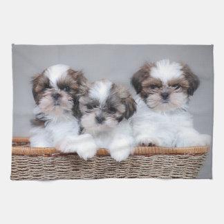 シーズー(犬)のTzuの子犬 キッチンタオル