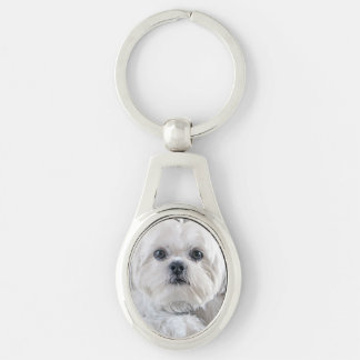 シーズー(犬)のTzuの子犬 キーホルダー