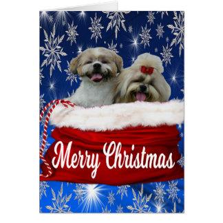 シーズー(犬)のtzuの挨拶状のクリスマス カード