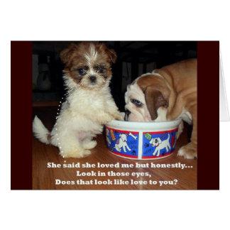 シーズー(犬)のTzuの英国のブルドッグおよび子犬 カード
