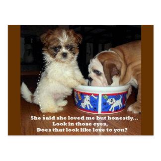 シーズー(犬)のTzuの英国のブルドッグおよび子犬 ポストカード