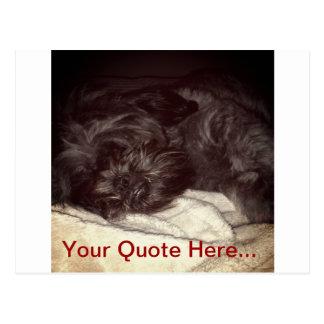 シーズー(犬)のTzuの郵便はがきは個人化なります ポストカード