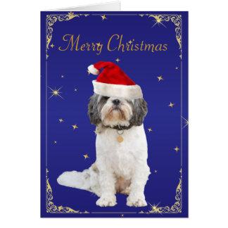 シーズー(犬)のTzu犬のかわいいサンタの帽子の休日のクリスマスカード カード