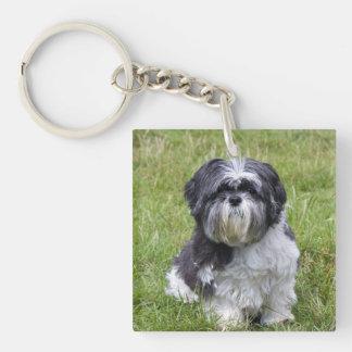 シーズー(犬)のTzu犬のかわいく美しい写真 キーホルダー