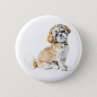 シーズー(犬)のTzu犬ボタンのバッジ 缶バッジ