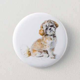 シーズー(犬)のTzu犬ボタンのバッジ 5.7cm 丸型バッジ