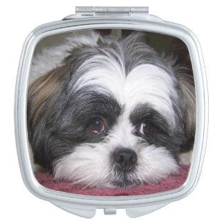 シーズー(犬)のTzu犬