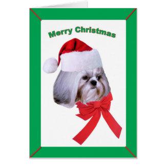 シーズー(犬)のTzu犬、クリスマスの挨拶 カード