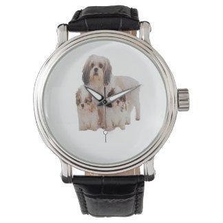 シーズー(犬) tsuの子犬 腕時計