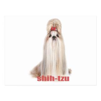 シーズー(犬)tzu犬はシーズー-シーズー犬の品種--を繁殖させます ポストカード