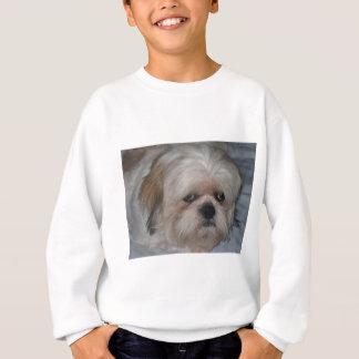 シーズー(犬) Tzu スウェットシャツ