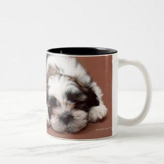 シーズー(犬) Tzu ツートーンマグカップ
