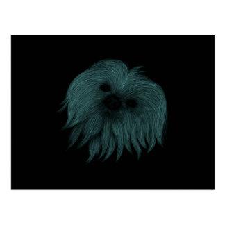シーズー(犬) Tzu ポストカード