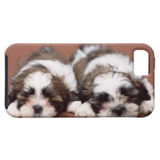 シーズー(犬) Tzu iPhone SE/5/5s ケース