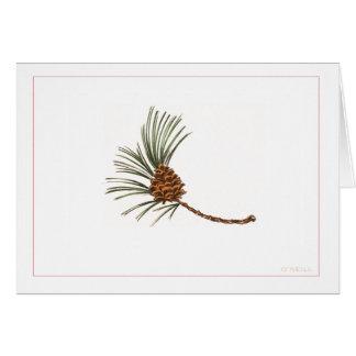 """ジェリーオーニール著""""Pinecone"""" カード"""