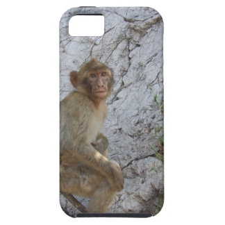 ジブラルタル猿のiPhone 5の穹窖 iPhone SE/5/5s ケース