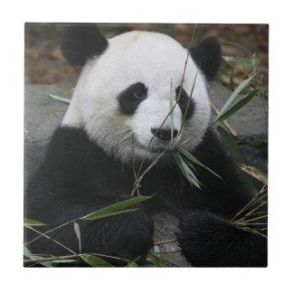 ジャイアントパンダの保護のジャイアントパンダ タイル