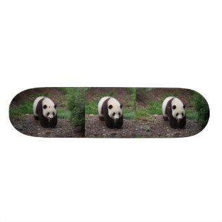 ジャイアントパンダの写真のスケートボード スケボー