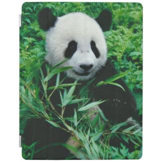 ジャイアントパンダの幼いこどもは薮のタケを食べます、 iPadスマートカバー