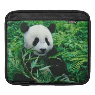 ジャイアントパンダの幼いこどもは薮のタケを食べます、 iPadスリーブ