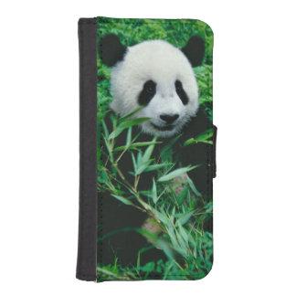 ジャイアントパンダの幼いこどもは薮のタケを食べます、 iPhoneSE/5/5sウォレットケース