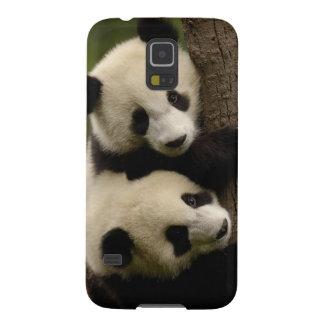 ジャイアントパンダの赤ん坊(Ailuropodaのmelanoleuca) 2 Galaxy S5 ケース