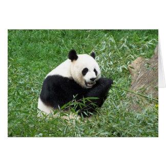 ジャイアントパンダの食べ物のタケ カード