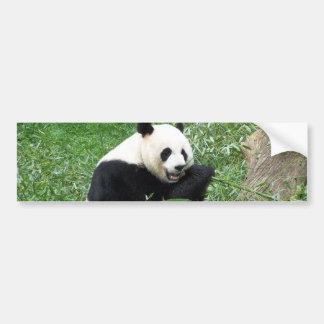 ジャイアントパンダの食べ物のタケ バンパーステッカー