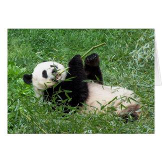 ジャイアントパンダのLounging食べ物のタケ カード