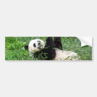 ジャイアントパンダのLounging食べ物のタケ バンパーステッカー
