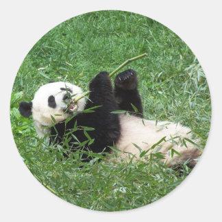ジャイアントパンダのLounging食べ物のタケ ラウンドシール