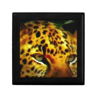 ジャガーの目 ギフトボックス
