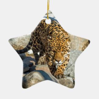 ジャガーの習慣プロダクト セラミックオーナメント
