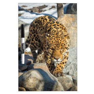 ジャガーの習慣プロダクト ホワイトボード