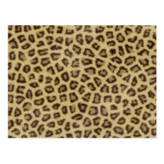 ジャガーの質2 ポストカード