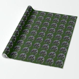ジャガーのDiabloの緑の包装紙 ラッピングペーパー