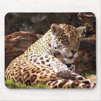 ジャガー6 マウスパッド