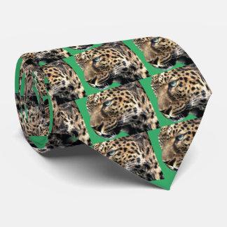 ジャガー タイ