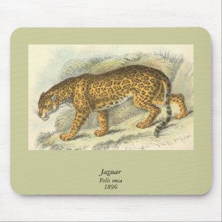 ジャガー、ネコ属のonca マウスパッド