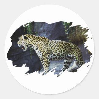 ジャガー ラウンドシール