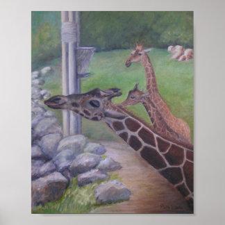 ジャクソンビルの動物園の時間を食べ物を与えること ポスター