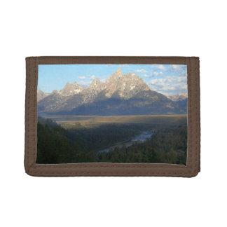 ジャクソンホール山(Tetonの壮大な国立公園)
