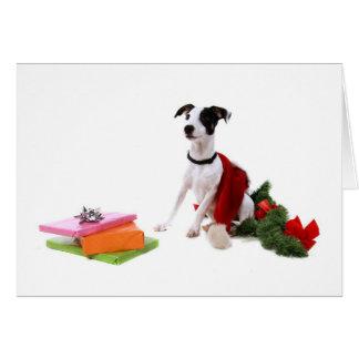 ジャッキラッセルおよびクリスマス、 カード