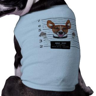 ジャックラッセルの囚人 ペット服