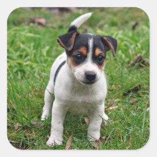 ジャックラッセルテリアの子犬のステッカーシート スクエアシール