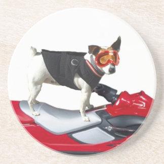 ジャックラッセルテリア犬 コースター